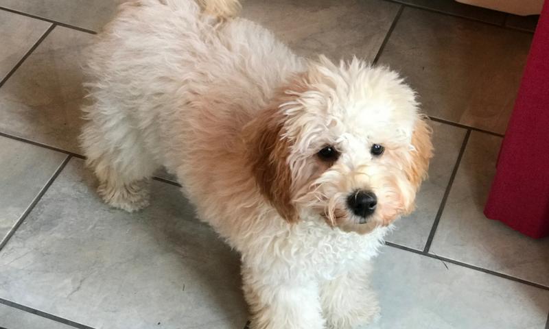 Freya 6 months