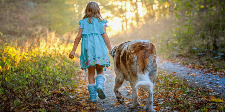 Little girl walking with her dog by her side
