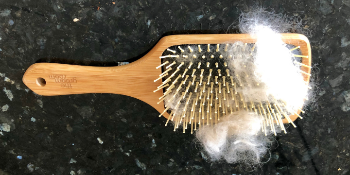Dog Grooming Brush with shedding hair