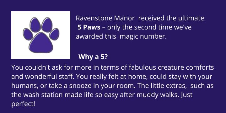 5 Paw Award